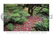 Inverewe Gardens Wester Ross (HA6)