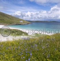 Vatersay, Outer Hebrides Colour Photo Greetings Card