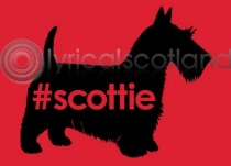 #scottie Magnet (H)