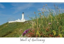 Mull of Galloway Postcard (HA6)