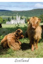 Balmoral Castle - Scotland Postcard (V A6 LY)