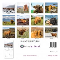 2020 Calendar Highland Cows (Mar)