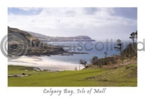 Calgary Bay, Isle Of Mull Postcard (H A6 LY)