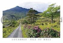Road To Loch Buie & Ben Buie Postcard (H A6 LY)