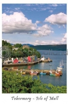 Tobermory Harbour, Classic Postcard (V A6 LY)