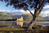 Kilchurn Castle & Tree Postcard (HA6)