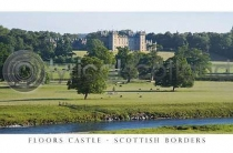 Floors Castle Postcard (HA6)