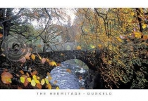 Hermitage Bridge, Autumn Postcard (HA6)