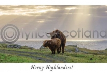 Horny Highlanders Postcard (HA6)