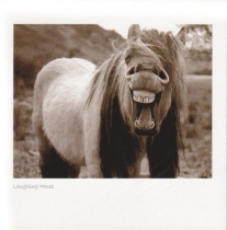 Laughing Horse Sepia Greetings Card
