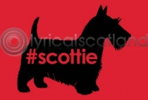 #scottie postcard (HA6)