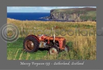 Massey Ferguson Tractor - Sutherland Postcard (H A6 LY)