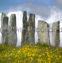 Callanish Stones Colour Photo Greetings Card (LY)