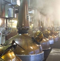 Malt Whisky Stills Colour Photo Greetings Card