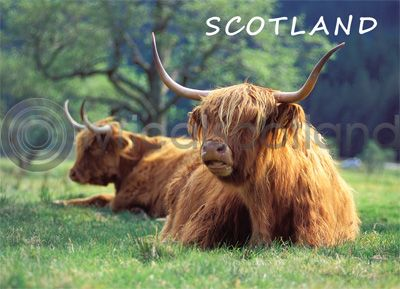 Scotland - Highlanders at Glen Nevis Magnet (H)
