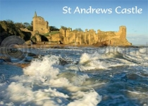 St Andrews Castle Magnet (H LY)