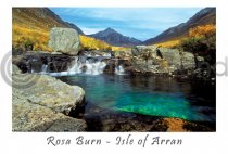 Rosa Burn Pool Postcard (HA6)