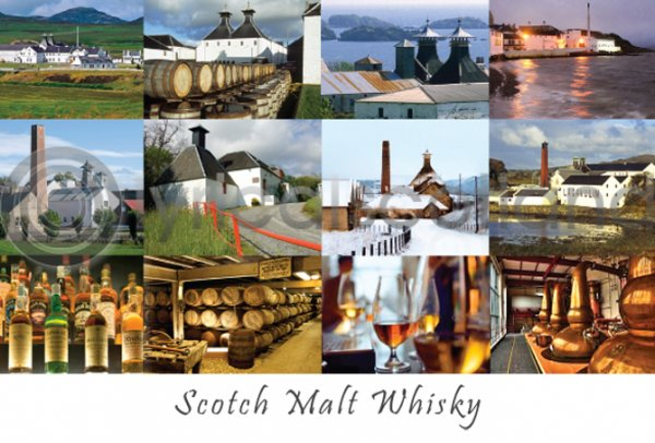 Scotch Whisky Composite Postcard (H A6 LY)